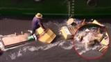 Thuyền bị tông lật, chồng bất chấp nguy hiểm lao xuống nước cứu vợ: Khoảnh khắc sinh tử mà ai cũng thấy ấm lòng