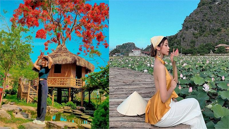 Phượng mọc giữa nhà gỗ, hồ sen nở rộ gây sốt ở 'thánh địa sống ảo' của đất Ninh Bình