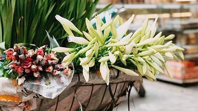 Chùm ảnh: Tháng Tư về, hoa loa kèn nở rộ, trắng tinh khôi khắp phố phường Hà Nội