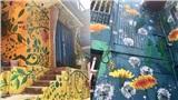Hàng loạt ngôi nhà ở Đà Lạt 'nở hoa' - thêm địa điểm chơi Tết lý tưởng cho team 'sống ảo'