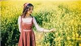 Vừa hết mùa mai anh đào, Đà Lạt lại xuất hiện cánh đồng hoa cải vàng lãng mạn như truyện cổ