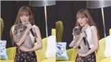 Fan ghen tỵ với cún cưng của Taeyeon, phải giả tiếng chó sủa để thần tượng chú ý