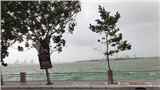 Gió mùa về, hồ Tây nổi sóng như biển động khiến dân tình phấn khích