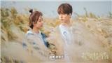 'Chàng trai Mặc Cách Ly của tôi' tung trailer hài hước, Dương Tử - Mã Thiên Vũ đẹp đôi