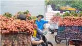 Vải thiều Lục Ngạn vào mùa, tình nguyện viên giúp sức 'giải cứu' giao thông