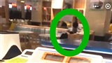 Nữ sinh viên vô tư diễn cảnh nóng với bạn trai ngay tại căng tin trường học