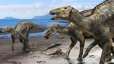 Tìm thấy loài khủng long lớn nhất lịch sử Nhật Bản