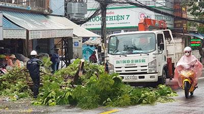 Đà Nẵng: Gần 400 cây xanh ngã đổ dù chỉ ảnh hưởng bão số 5
