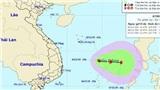 Cập nhật: Áp thấp nhiệt đới giật cấp 8, có thể thành bão trên Biển Đông