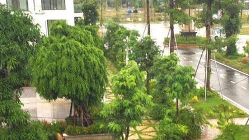 Hà Tĩnh: Khởi tố nhiều cán bộ chủ chốt thị trấn vì sai phạm đất đai