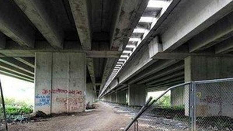 Vụ 2 người đàn ông chết dưới gầm cầu ở Thái Bình: Nghi do sốc ma túy