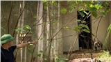 Tin mới vụ bé trai bị trói trong rừng tử vong