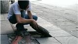 Hà Nội yêu cầu kiểm tra toàn bộ hoạt động lát đá vỉa hè