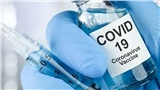 Bao giờ có kết quả ban đầu thử nghiệm vaccine ngừa Covid-19?