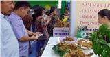 Quảng Nam: Tạm đình chỉ các hoạt động kinh doanh karaoke, massage, vũ trường, quán bar