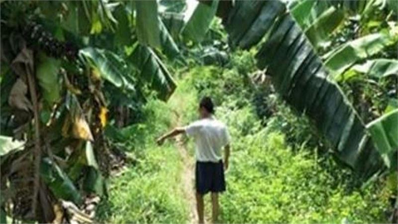 Đã bắt được nghi phạm chặn xe bé gái trên đường vắng, đưa vào vườn chuối xâm hại tình dục