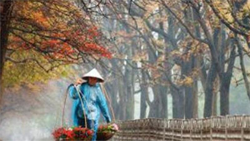 Trong vòng 1 tuần, Miền Bắc sẽ đón 2 đợt gió mùa gây mưa trên diện rộng