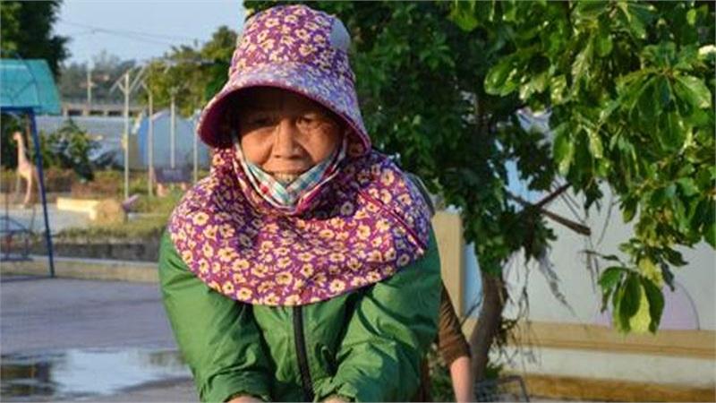 Lũ rút, dân Quảng Bình lao đao vì thóc lúa mọc mầm: 'Thóc này giờ chỉ phơi cho gà vịt ăn thôi'