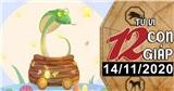 Tử vi thứ 7 ngày 14/11/2020 của 12 con giáp: Tý đừng lo chuyện bao đồng, Tỵ tiền bạc rủng rỉnh