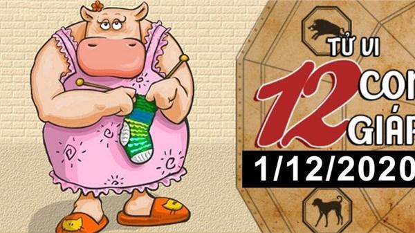 Tử vi thứ 3 ngày 1/12/2020 của 12 con giáp: Sửu dễ bị lừa gạt, Dậu vượng vận đào hoa