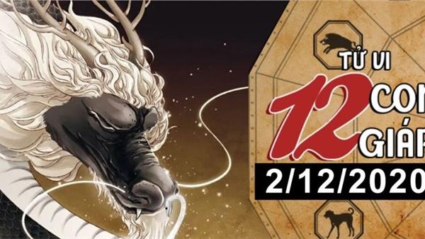 Tử vi thứ 4 ngày 2/12/2020 của 12 con giáp: Thìn được nguyệt lão se duyên, Tỵ dễ bị lừa gạt