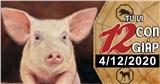 Tử vi thứ 6 ngày 4/12/2020 của 12 con giáp: Dậu đừng tiêu xài hoang phí, Hợi được nhiều người theo đuổi