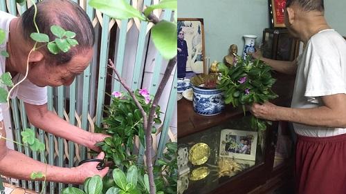 Khoảnh khắc xúc động ngày 8/3: Cụ ông U90 tự tay hái hoa dành tặng người vợ đã khuất nhiều năm trước