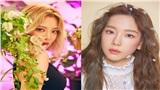 Ngang trái như SNSD: Hyoyeon không biết bài hát của Taeyeon vì lý do 'khó đỡ'