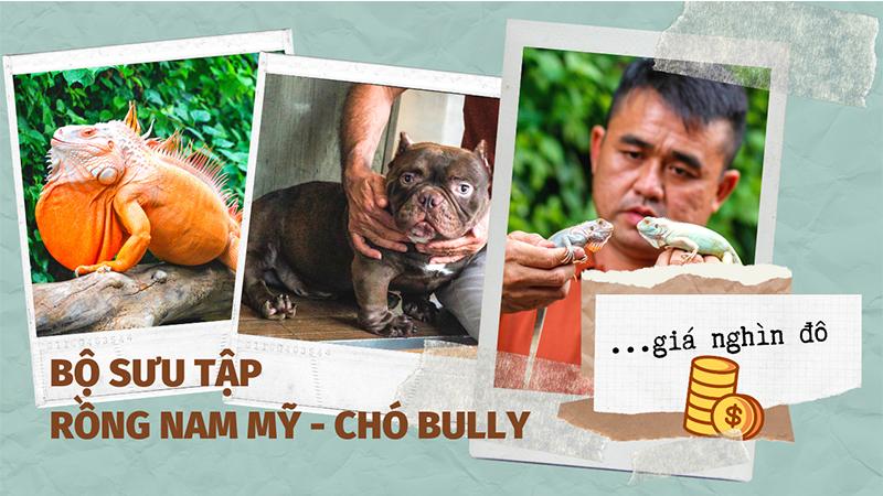 Người đàn ông Sài Gòn và bộ sưu tập thú cưng 'khủng': Rồng Nam Mỹ và chó Bully nghìn đô