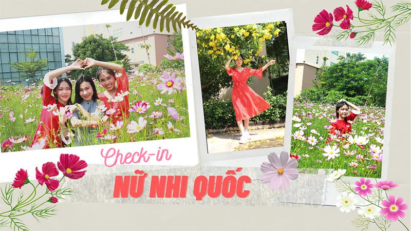 Góc 'sống ảo' trường người ta: Trồng cả vườn hoa sao nhái cực xinh để sinh viên check-in thỏa thích