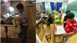 Cậu bé mang áo đồng phục bán bắp luộc đã đi học được một tuần