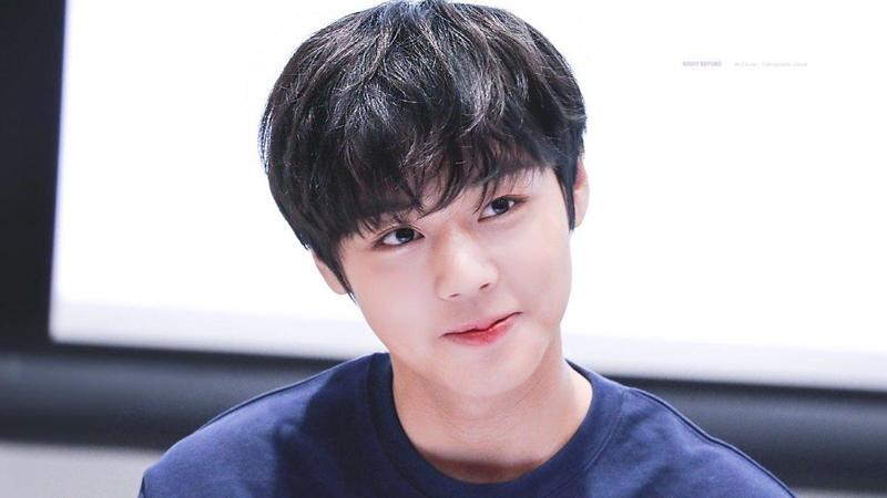 'Tiên tử nháy mắt' Park Ji Hoon xác nhận gia nhập đường đua K-Pop vào tháng 5 sau nửa năm vắng bóng