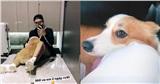 Soobin Hoàng Sơn và 'bạn gái tin đồn' vô tình để lộ chi tiết nghi vấn đang hẹn hò?