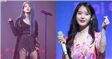 Đâu là lí do khiến 2020 là năm đầu tiên IU có thể không tổ chức concert solo?