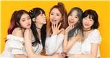 Netizen ngỡ ngàng trước sự tan rã 'không đầu đuôi' của nhóm nhạc nữ Yellow Bee