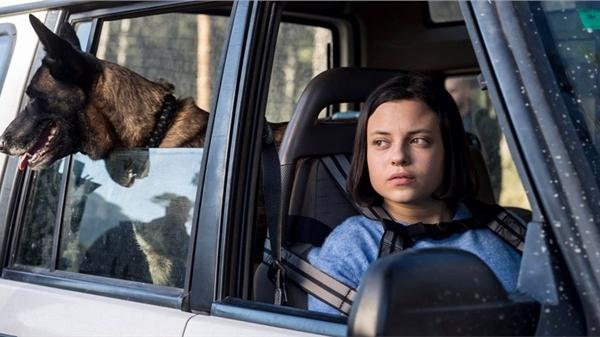 'Song sinh' - Bộ phim điện ảnh sẽ khiến bạn phải 'gai lưng' mỗi khi ở nhà một mình với chó cưng