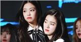 Irene xinh đẹp và Jennie sang chảnh: Chuyên gia phẫu thuật thẩm mỹ chọn ai là người đẹp hơn?
