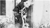 Bức ảnh chụp tội ác của 'con thỏ giết người' lôi nạn nhân tàn bạo khiến FBI phải vào cuộc điều tra nhưng sự thật lại hoàn toàn khác
