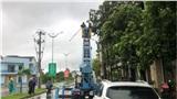 Bão số 6 chưa tới, Quảng Ngãi đã hứng mưa, gió ầm ầm