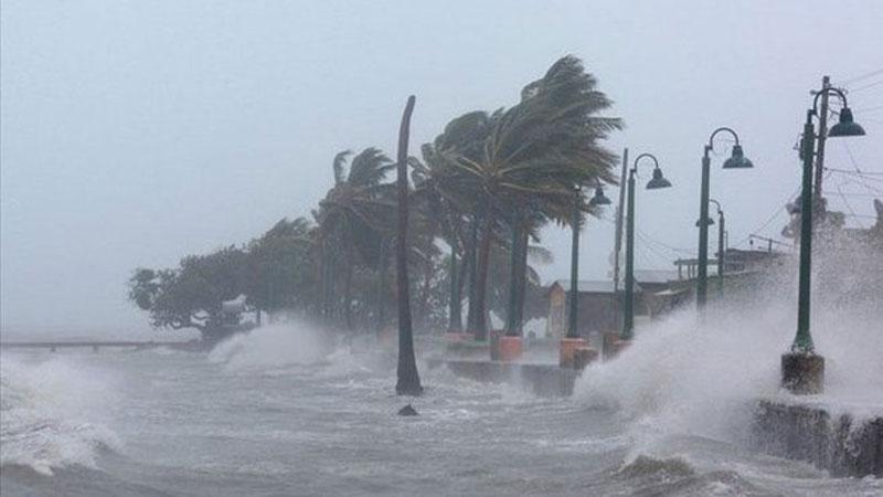 Áp thấp nhiệt đới đã mạnh lên thành bão Saudel, gió giật cấp 10