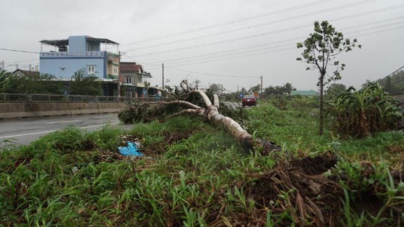 Quảng Ngãi 'nín thở' đón bão số 9 Molave