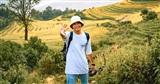 Mê mẩn 'mùa vàng' Tây Bắc qua bộ ảnh cực chất của travel blogger một mình khám phá Y Tý