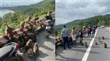Người dân thờ ơ trước khuyến cáo không cho khỉ ăn ở bán đảo Sơn Trà