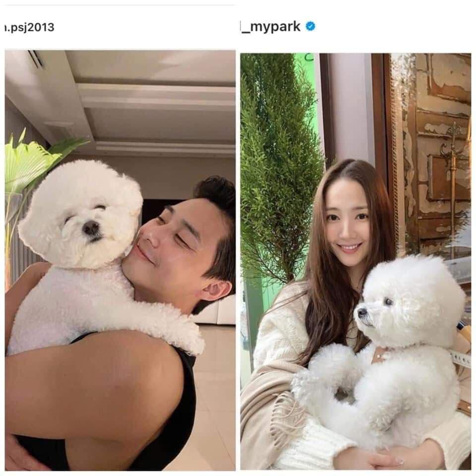 HOT: Cặp đôi 'Thư ký Kim' Park Seo Joon và Park Min Young lộ bằng chứng hẹn hò 1