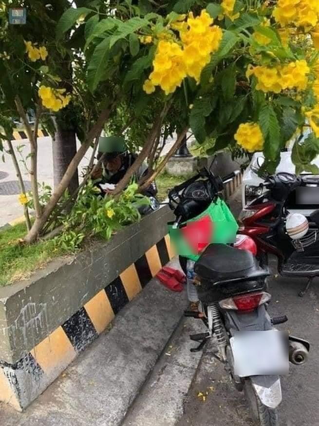 Bác tài xế ăn vội bữa cơm trưa ở lùm cây ven đường.