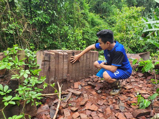 Những cây nghiến cổ thụ bị 'lâm tặc' cưa đổ, cắt khúc để làm thớt và vận chuyển ra khỏi rừng thuộc địa phận xã Minh Ngọc, huyện Bắc Mê, tỉnh Hà Giang.