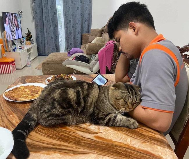 Với anh chồng thì quấn quýt, với chị vợ thì lườm nguýt, chú mèo khiến dân tình sửng sốt thốt lên: Đáng sợ hơn con giáp thứ 13! 10